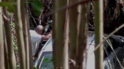 Hidden Cam - Woods 19
